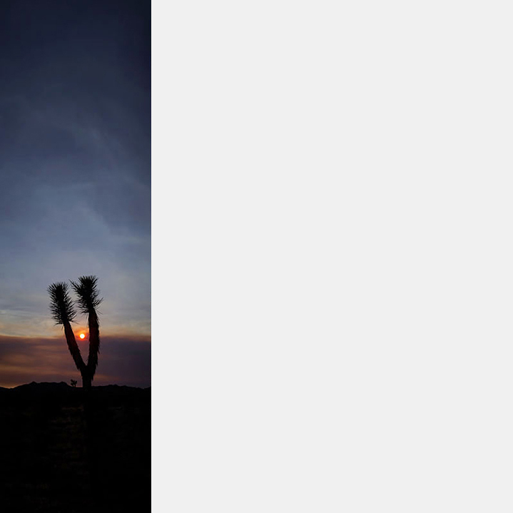 Joshua Tree Sunset (V-42)